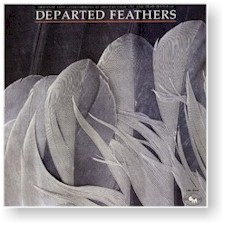 DEPARTED FEATHERS cover